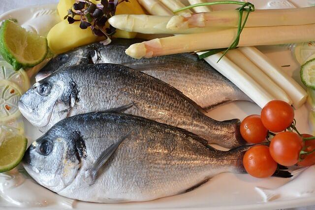 אכילת דגים